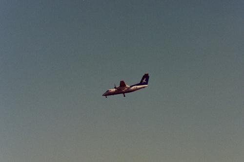 1989anzdafua1
