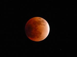 Moon14