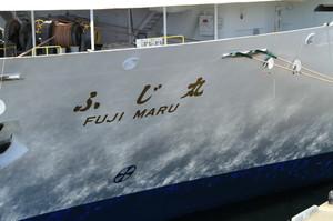Fujimaru10