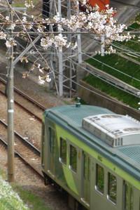 Senzokuike02