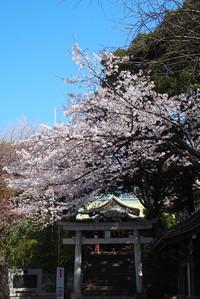 Yukigaya4