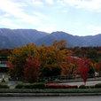開催場所は甲斐風土記の丘・曽根丘陵公園
